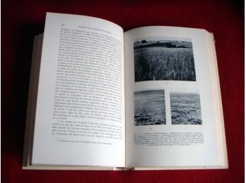 Éléments de géographie botanique - Germaine Pottier-Alapetite - Éditions Gauthier-Vilars - 1967