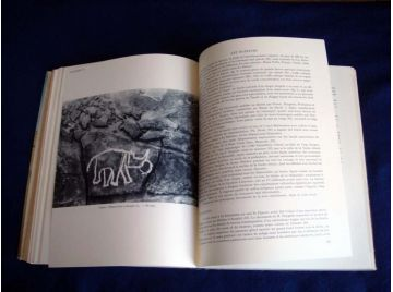 Missions Berliet, Ténéré, Tchad : 9 nov. 1959-7 janv. 1960, 23 oct. 1960-9 déc. 1960 [Unknown Binding] Société des automobiles M